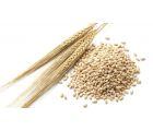 Пшеница несоложеная отборная 1кг