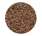 Солод  шоколадный Chocolate malt  EBC 800-1000 (Viking Malt) 1кг